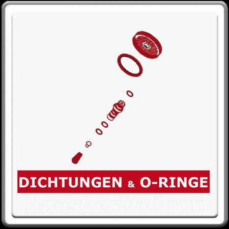 Dichtungen und O-Ringe